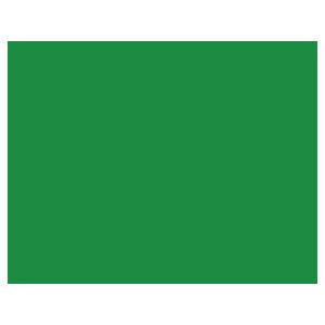 人に噛みつく犬